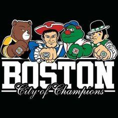 652383d5028852629c5a7cbae9301931--boston-sports-boston-red-sox